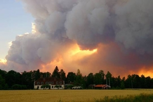 Small big 278292 forest sweden fire nportal.no